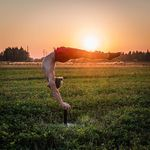 Beautiful sunset on Handstand Canes 😍 #handstand #canes #circuslife #calisthenics #cirque #circus #calisthenia #yoga #handbalance #balance #acro #equilibre #planche #onearmhandstand #gymnastics #strong